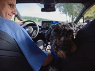 Auto Fotografie Toyota mit Hund für das Magazin Auto und Leben in Gelsenkirchen